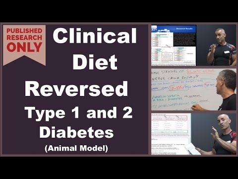 Clinical Diet Reversed Type 1 and 2 Diabetes 💚Animal Model