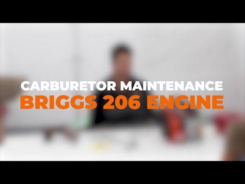 Briggs 206 Carburetor