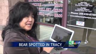 2 people report spotting bear in Tracy, snap photo
