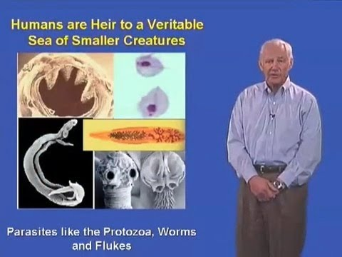 Stanley Falkow (Stanford University) Part 1: Human-Pathogen Interaction