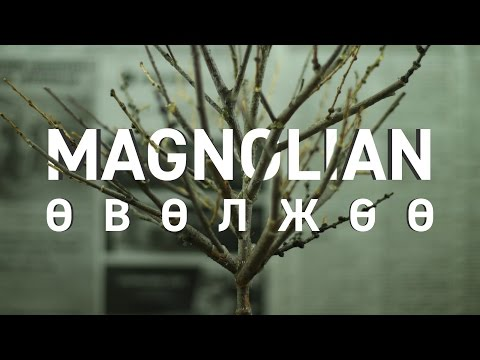 Magnolian - Өвөлжөө (Mongolian Version)
