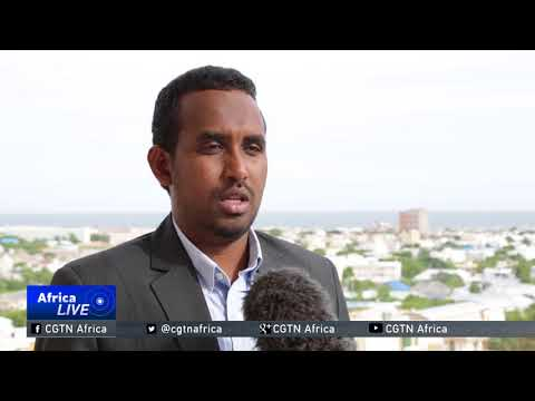 UAE to end military support to Somalia
