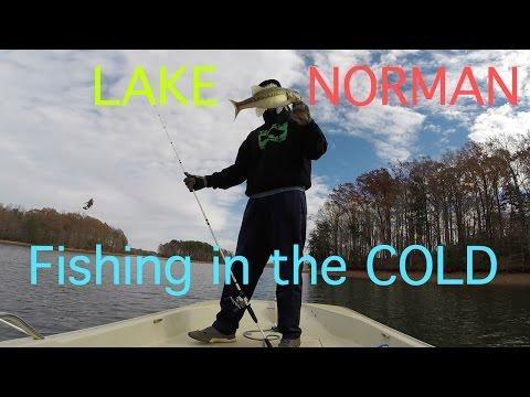 Lake Norman Winter Bass Fishing