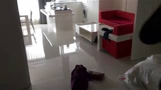 서귀포 오션팰리스호텔 디럭스더블룸 내부 모습 보기
