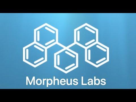 Обзор ICO: Morpheus Lab (Блокчейн для всех) токен MITx
