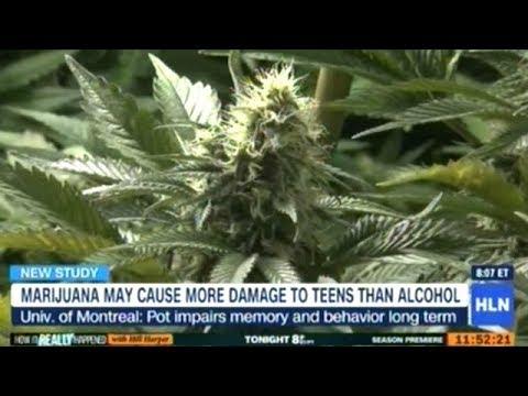 New Study Finds Marijuana Causes Long Term Brain Damage In Teens!