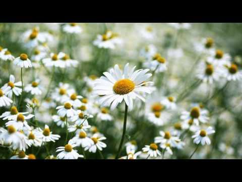 I Believe (My Sassy Girl OST) - Shin Seung Hoon - Instrumental
