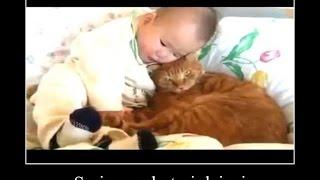 Śmieszne Koty i Dzieci #2