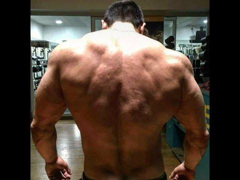 Mon Top 5 des exercices pour le dos.