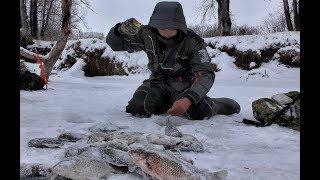 ВОТ ЭТО ПОНИМАЮ ПОПАЛИ НА КАРАСЯ!!!Первый лед 2019-2020! Крупный карась,коряги,рыбалка на Алтае
