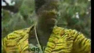 Tiger - No wanga gut