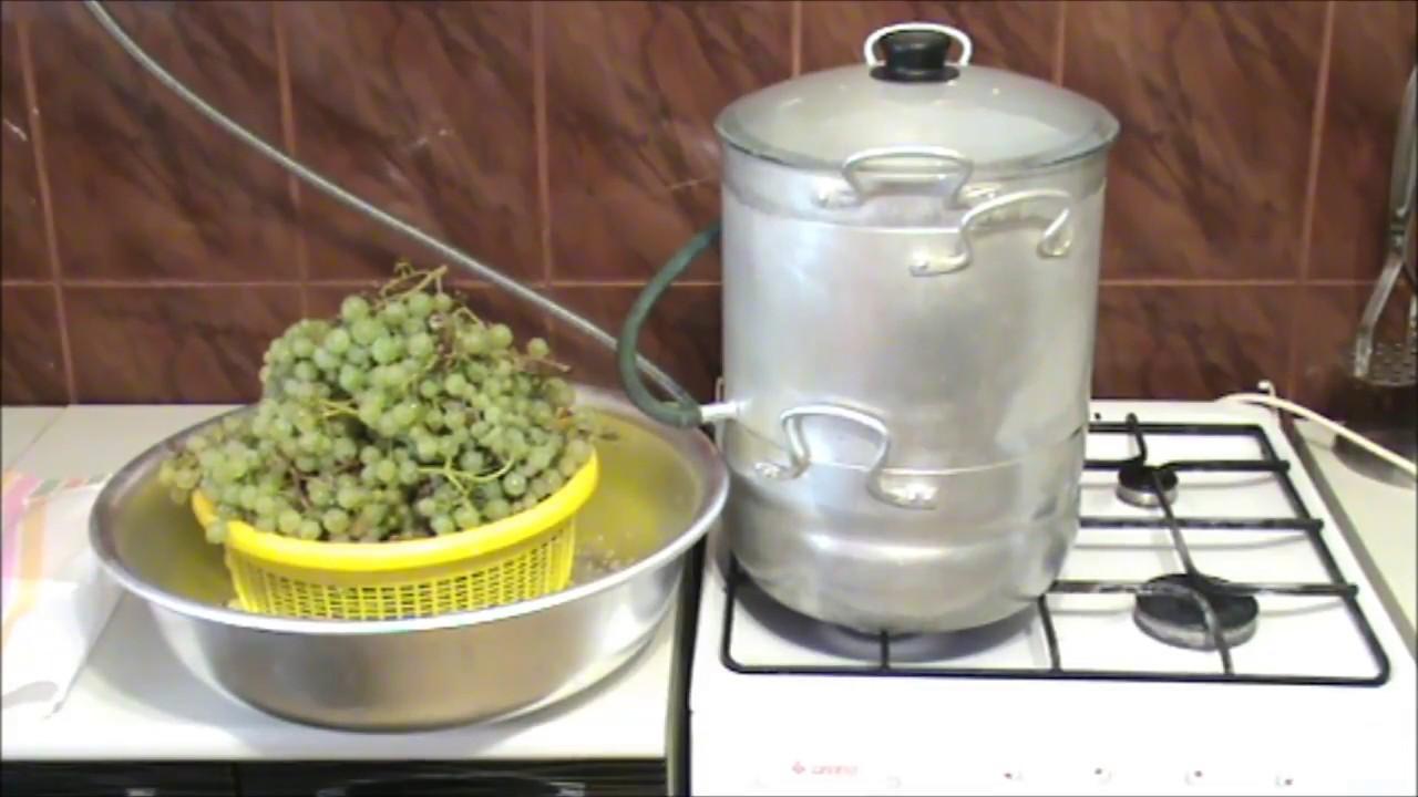 Как из винограда сделать сок фото 723