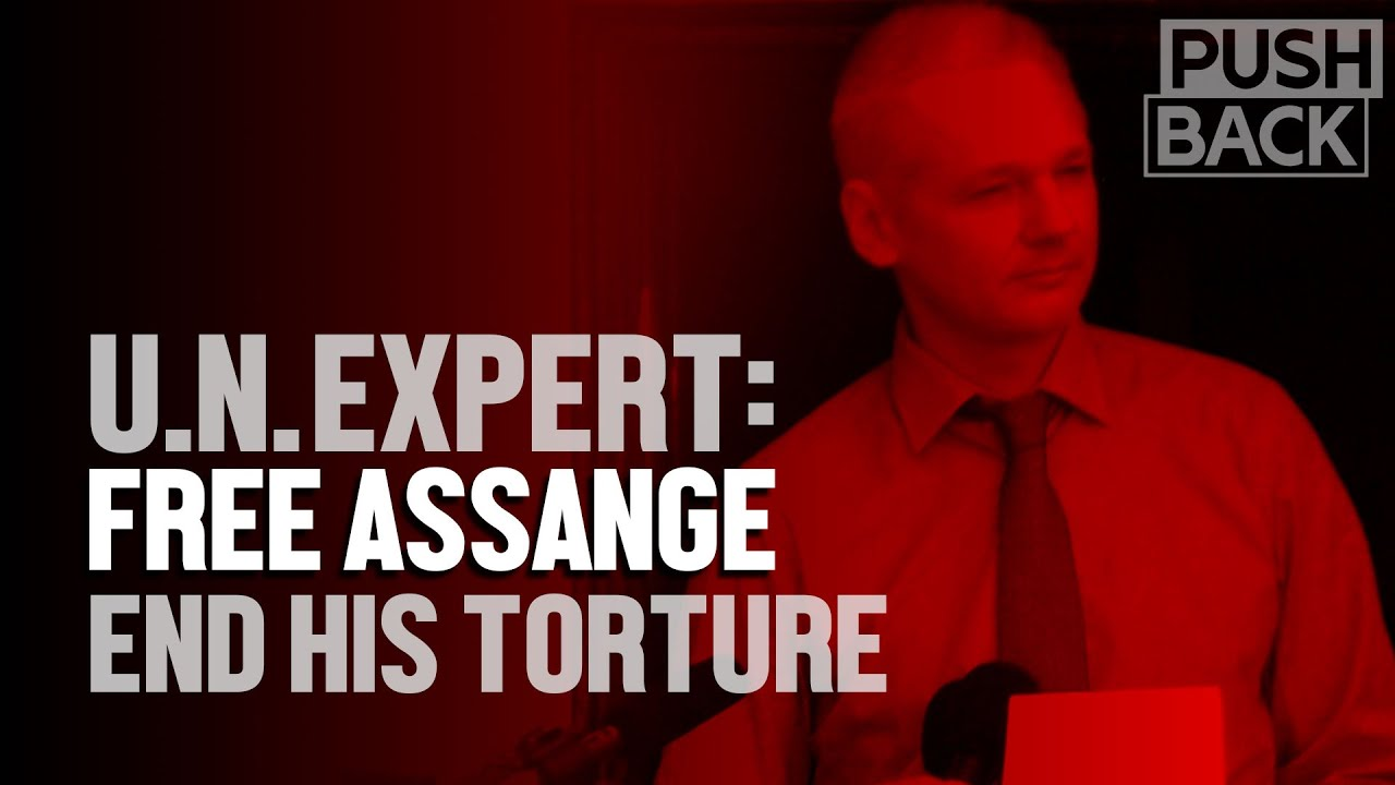 UN torture expert on Julian Assange's persecution and the lies behind it