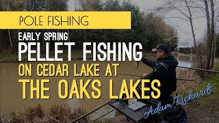 Early Spring Pellet Fishing - The Oaks Lakes, Cedar Lake
