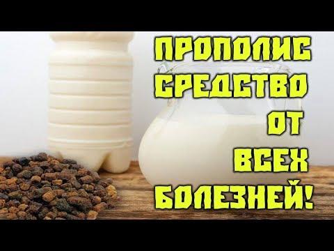 Сочетание прополиса и молока! Это средство помогает от многих болезней!