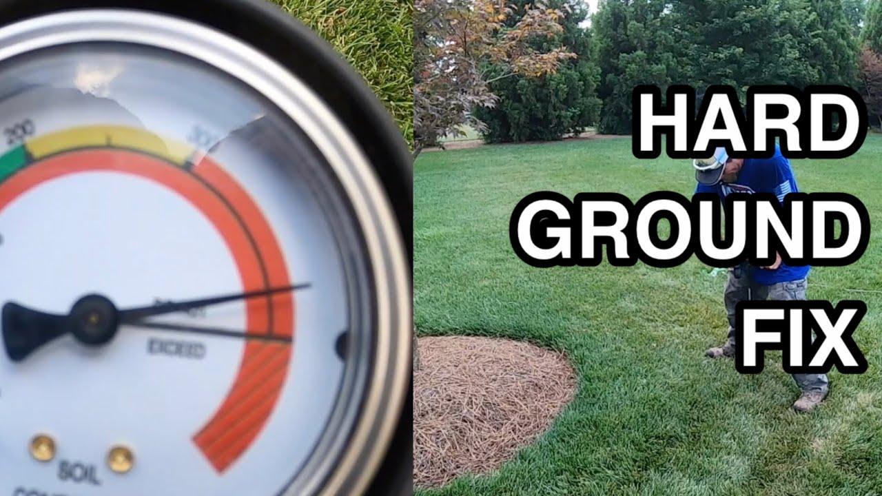 Hard Spot in my Yard - How I Fix it