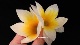 Beautiful Frangipani Flower Spring Onion - Lesson 25 By Mutita Art Of Fruit Vegetable Carving Video