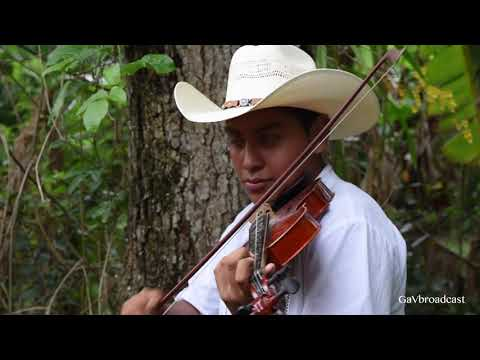 Puras cumbias con violín (El Tao Tao y La Hormiguita) por el Trío Inspiración Huapanguera