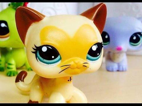 Littlest Pet Shop: Vzpomínka na jaro (Film)