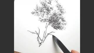 곡선 해칭으로 나무그리기.3