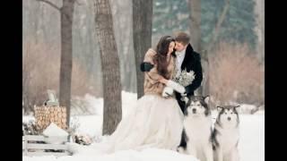 Идеи свадебных фотосессий зимой
