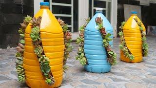 Maneira Incrível de Cultivar Suculentas em Garrafas de Plástico