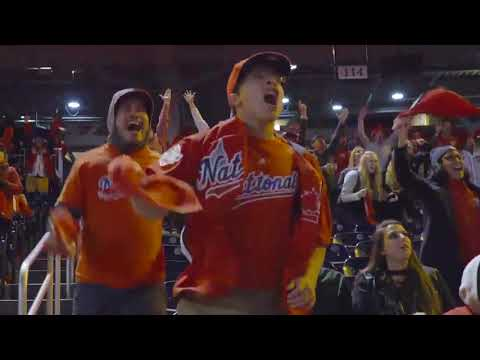Nationals Beat the Dodgers. Everyone Goes Nuts.