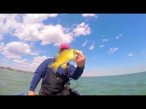 Fishing with Tyler ep. 15 - 2017 Lake St. Clair Smashfest!!!!
