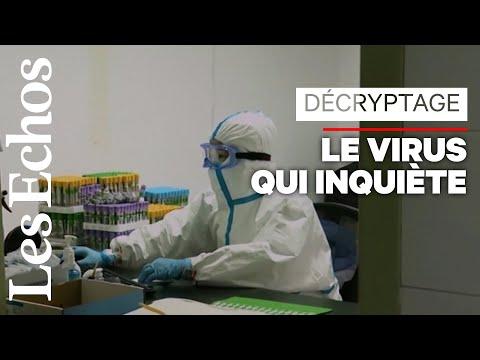 Que faire face à la propagation du virus chinois ?