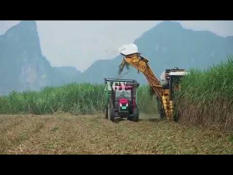 350hp large scale sugarcane harvester - wuhan AGY machinery equipment co.,ltd