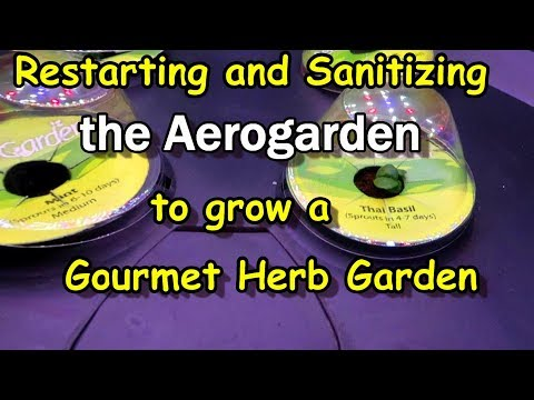 How to Sanitize and Reset the Aerogarden to Plant a New Garden