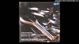 Johann Georg Albrechtsberger - Concerto in E a 6, Finale, Tempo Di Menuet