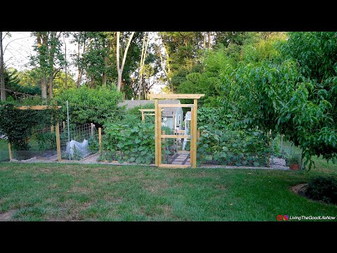 Tour Our Mega Vegetable Garden & Greenhouse 2020 Homestead Organic Growing Farmstead, Koi Pond