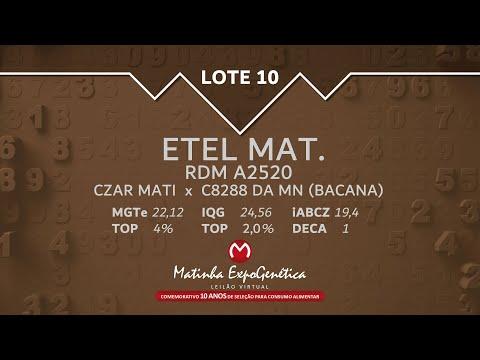 LOTE 10 MATINHA EXPOGENÉTICA 2021