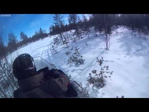 По болоту на снегоходе(3)  Lynx 59 YETI 600 ACE