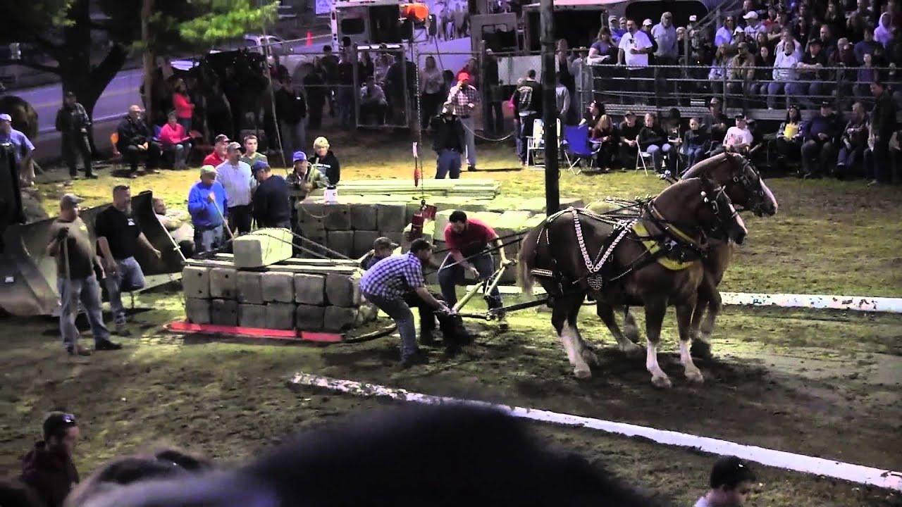Download Draft Horse Pull 2013 Deerfield Fair NH Pulling Video 29