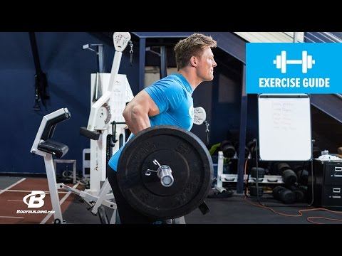 How To Do A Yates Row Reverse Grip | Exercise Guide