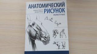 Книга Анатомический Рисунок. Животные | Быстрый обзор