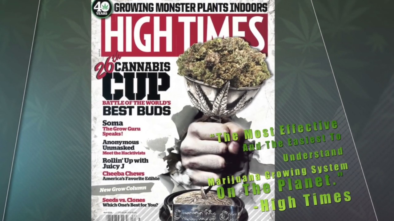 Most Effective Marijuana Grow Guide - High Times - YouTube