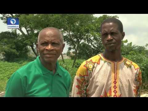 BoI Weekly: Focus On Ido-Ibadan Fish Farmers Cooperative Society Feed Mill Pt 1