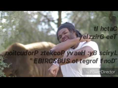 Tee Grizzly- Catch It lyrics video