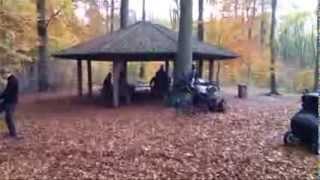 Vil du med en tur i skoven?