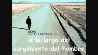 Video Lost on You Echo & The Bunnymen