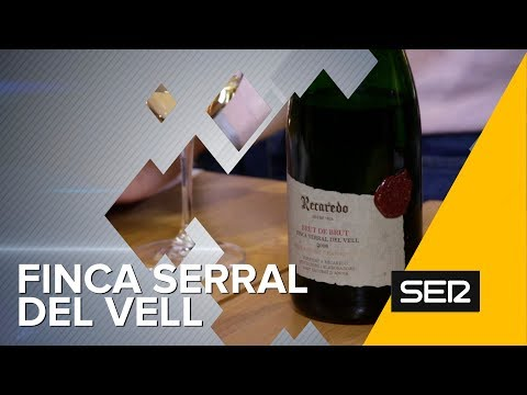Finca Serral del Vell, de Recaredo: ¡Uno de los grandes cavas de este país! | Club de Catas