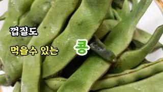 비타민C 식이섬유 단백질 한번에 먹을수있는 채콩/채콩 …