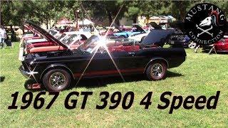 Pierre's 1967 Mustang GT 390 Convertible 4 speed 10 year restoration Mustangs  at Warner Center Park