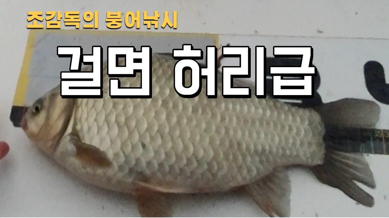 [조감독의 붕어낚시] 부사호 걸면 허리급/보트낚시의 추억