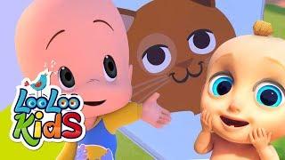 🐱 Mister Cat 🐾 Educational Songs for Children    LooLoo Kids
