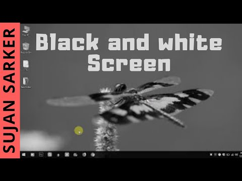 How to Fix Black and white Screen/Display on Laptop/Pc