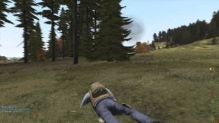 Nice tree you got there boy - DayZ Overpoch - Chernarus